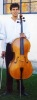 folkroddels Cello gestolen in Waals-Brabant